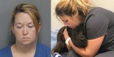 Relacionada elizabeth lena james quiso matar de hambre perro exnovio champ