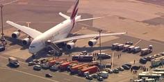 Relacionada avion emirates cuarentena