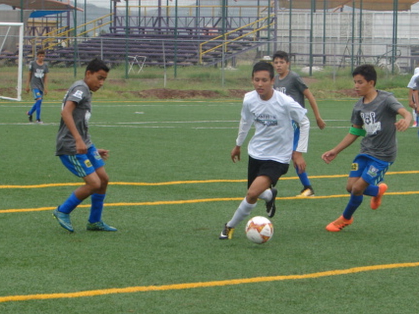 Fut estatal sept