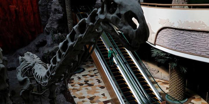 Galeria museo 4 birn