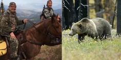 Relacionada ataque oso