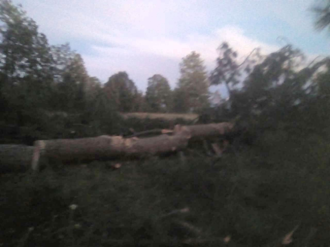 4 madera