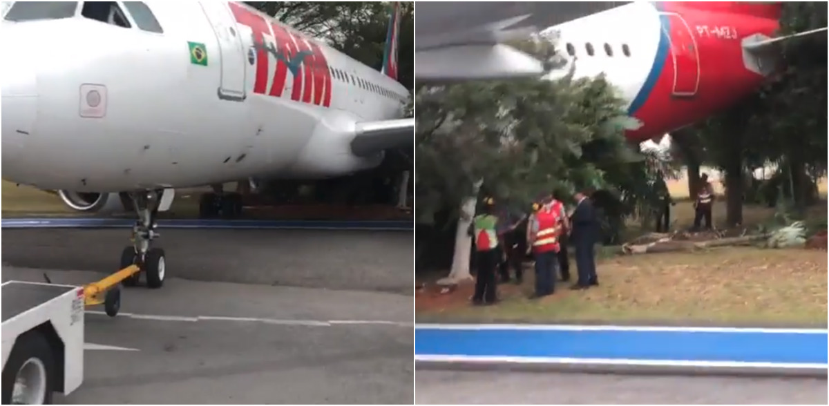 Avion choca contra arboles