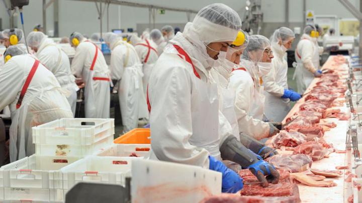 Empleado de procesadora de carne es captado orinando sobre línea de trabajo