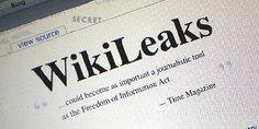 Relacionada wikileaks 1