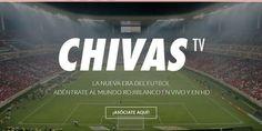 Relacionada chivas tv