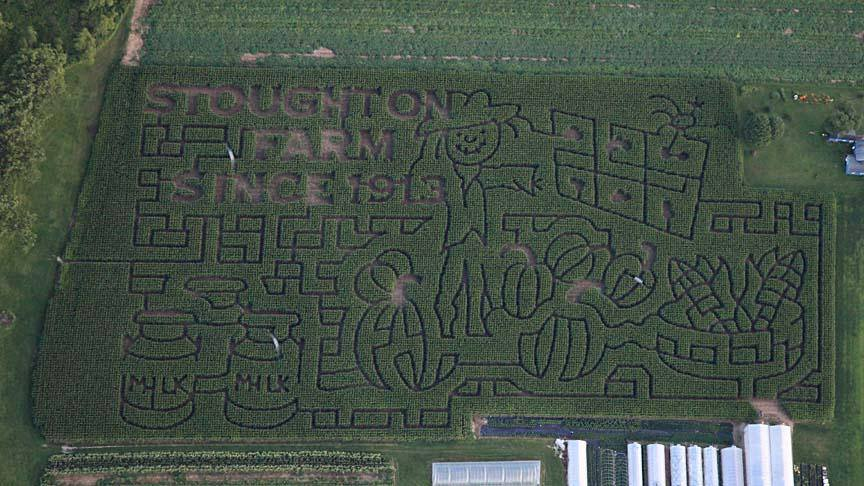 Our 2013 maze  this year we are honoring 100 years since the stoughton family