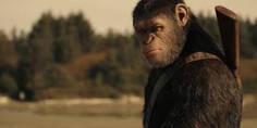 Relacionada cesar simio parlante vuelta claima20161209 0190 28