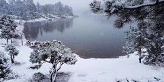 Relacionada nieve