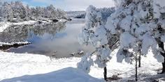 Relacionada lago arareko irvin chaparro