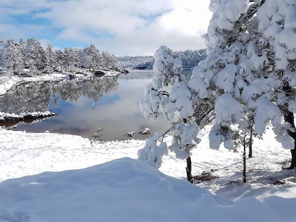 Lago arareko irvin chaparro