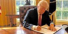 Relacionada trump executive order
